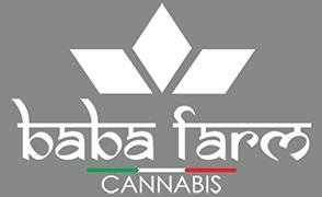 Baba Farm